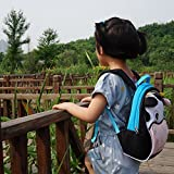 Yodo-Playful-Kids-Lunch-Backpack-and-Boxes-Carry-Bag-Insulated-Lining-with-Safety-Harness-Blue-C