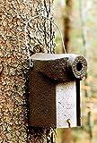 Schwegler Naturschutzprodukt Nisthöhle Typ 3SV Flugloch 34 mm mit Marderschutz