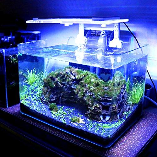 MAINLICHT Aquarium LED Beleuchtung, Aquariumbeleuchtung Lampe aus Aluminium Acrylglas Weiß Blau Rot Grün mit Befestigungsklammer für 26-50cm/33-57cm/40-64cm Aquarium (Aquarium-beleuchtung-anleitung)