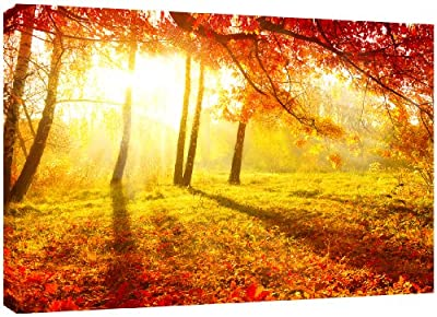 MOOL Large 32 x 22-inch Autumn Tree Forest Sunshine Canvas Wall Art Print Hand Stretched on a Wooden Frame with Giclee Waterproof Varnish Finish Ready to Hang
