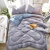 WENZHEN Bettdecke Daunen,Bettdecke Superweiche warme, gemütliche, luxuriöse Mikrofaserbettdecken All Season Quilts-D_150X200cm / 2kg