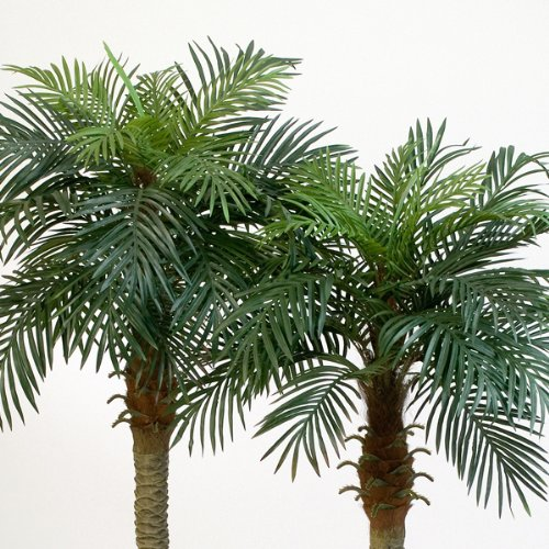 artplants – Künstliche Phönix-Palme Camila mit 21 Palmwedeln, 150 cm – Deko Palme/Kunst Palme