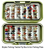 fly box and 100 flies - Christmas fishing present