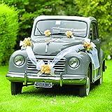 Brizzolari Kit décoration Voiture mariés, avec Cocardes Jaune et Ruban Blanc, Couleur, 004938_ 02