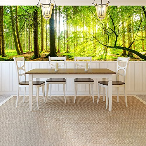 sunlight-shines-through-green-trees-forest-wall-mural-nature-photo-wallpaper-available-in-8-sizes-x-