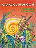 6: Caracol magico/ Magic Snail: Ortografia Y Redaccion/ Spelling and Composition