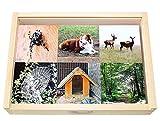 Zuordnungsspiel Tiere und ihr Zuhause, Legespiel aus Holz, 36 Montessori-Lernspiel-Steine welches Tier wohnt wo?