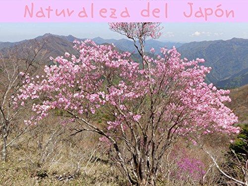 Descargar Libro Naturaleza del Japón de K U