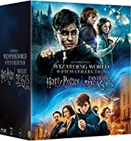 Wizarding World 9-Film Collection - Harry Potter: The Complete 8 Movies Collection (All Parts 1 to 8) + Fantas