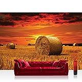 Papel Pintado Fotográfico Premium Plus fotográfico pintado–cuadro de pared–Natural Papel Pintado quemador Saco de heno Cielo nubes puesta del sol Natural Naranja–No. 1006, Naranja, Fototapete 300x210cm | PREMIUM PLUS