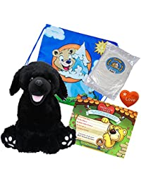 "Make Your Own Stuffed Animal ""Shadow The Black Labrador"" - No Sew - Kit With Cute Backpack!"