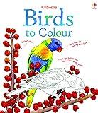 Birds to Colour (Nature Colouring Books)