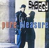 Pure Pleasure -