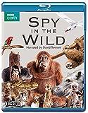 Spy in the Wild (BBC) (2-disc) [Blu-ray]