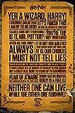 GB Eye LTD, Harry Potter, Citaziones, Poster 61 x 91,5 cm