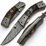 PAL 2000 MMJG-8853 Handgemachtes Damast-Klappmesser aus Stahl/Chefküchenmesser/Billet/Bar/Messer/Camping mit Scheide
