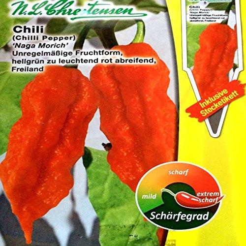 Chrestensen Gewürzpaprika / Chili 'Naga Morich' Saatgut Samen