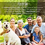 Fell-Pflege Gummi-Striegel von PetPäl für Hunde & Katzen mit Massage-Effekt in Salon Qualität - 6