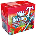 Eistee Eistee Wildbeere, 12er Pack (12 x 500 ml)