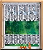 Gardinenbox Scheibengardinen Set 2 Teilig, 30/50x160, 33511, 33500