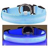 Q4Pets Blinklicht Hund Oder Katze Kragen. Wasserdichte Reflektierende LED-Sicherheits-Haustier-Krägen. (Kleines, Blau)