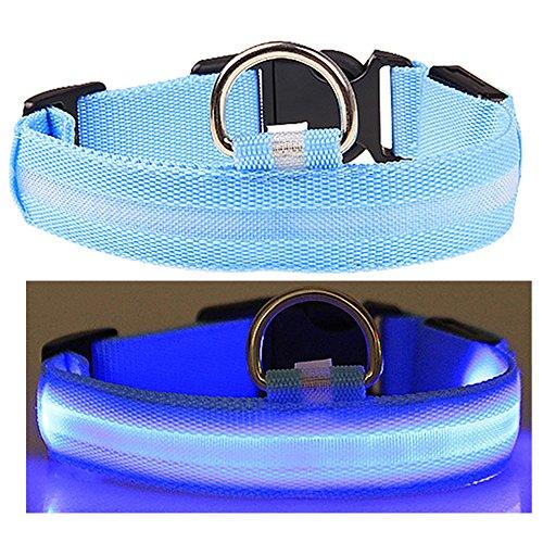 collar-de-perro-de-luz-intermitente-collares-impermeables-del-animal-domstico-de-la-seguridad-del-le