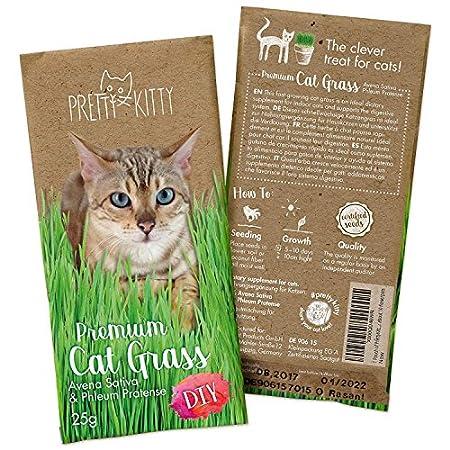 PRETTY KITTY Premium Katzengras Saatmischung: 1 Beutel mit 25g Katzengras Samen für 10 Töpfe fertiges Katzengras – Eine…