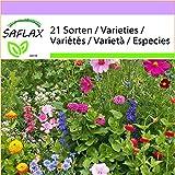 SAFLAX - Wildblumen: Cottage Garden - 1000 Samen - 21 Sorten