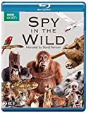Spy in the Wild (BBC) (2-disc) [Blu-ray]