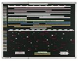 Legamaster 7-460074 Streifenplaner Professional 170 x 120 cm, 93 Planungsbahnen