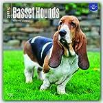 Basset Hounds 2017 Calendar