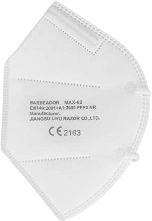 Mascherina ffp2 salopharma - 5x kn95  - certificata ce2163 - 5 pezzi ffp2 + 1 mascherina ffp3 omaggio - B0893FFQS4