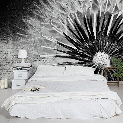 Apalis Vliestapete Blumentapete Pusteblume schwarz und Weiß Fototapete Breit, Vliesfototapete Wandtapete Wandbild, grau