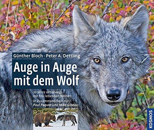 Preisvergleich Produktbild Auge in Auge mit dem Wolf: 20 Jahre unterwegs mit frei lebenden Wölfen