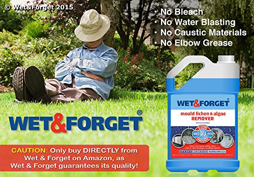 Wet & Forget - Moss Mould Lichen & Algae Remover (5 Litre) cleans anything with no effort Test