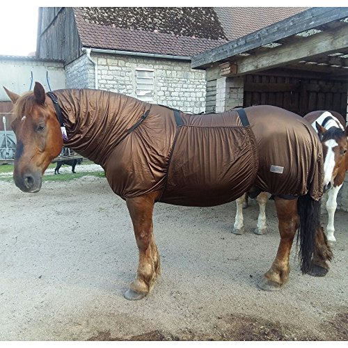 netproshop Ekzemer Fliegendecke Geschlossene Brust Falabella Shetty Pony Cob Full Auswahl, Farbe:Braun, Groesse:55