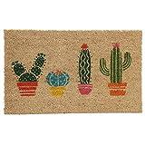 Paillasson Cactus - Fibre de coco - 26x76x2cm