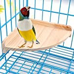 XMSSIT Bird Platform Perch Stand Wood for Small Animals Parrot Parakeet Conure Cockatiel Budgie Gerbil Rat Mouse Chinchilla Hamster Cage Accessories Exercise Toys Sector 8