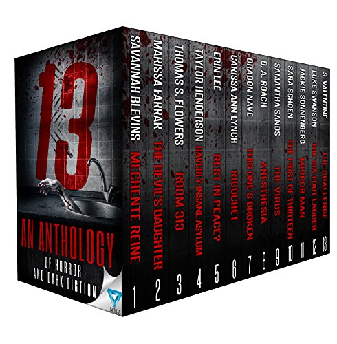 13-an-anthology-of-horror-and-dark-fiction-english-edition