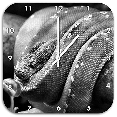 Monocrome, Grüne exotische Schlange, Wanduhr Durchmesser 48cm mit schwarzen spitzen Zeigern und Ziffernblatt, Dekoartikel, Designuhr, Aluverbund sehr schön für Wohnzimmer, Kinderzimmer, Arbeitszimmer (Python-spitze)