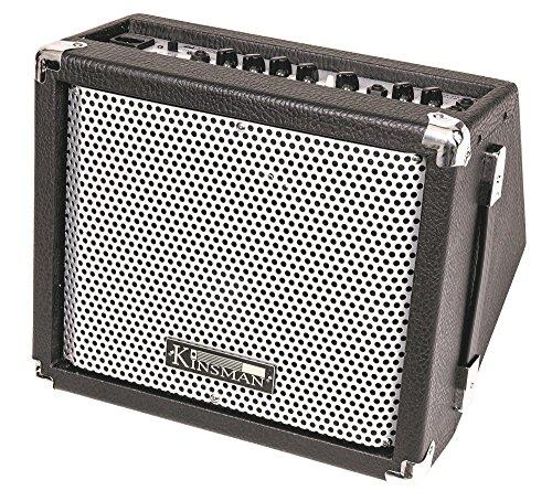 kinsman-15-w-busker-amplifier