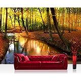 Liwwing FTVLPP-0252-350x245 - Vellón fotografía de fondo 350x245 cm - cima! premium plus fondo de pantalla! murales de papel tapiz mural foto mural de la pared xxl pintado pared wanddeko árboles del bosque, la naturaleza -. no 252