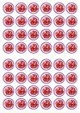 48garofano fiori commestibili Premium spessore zuccherato vaniglia, wafer Rice Paper mini cupcake topper, cake pops, Cookies
