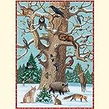 Image de Tiere im Winter Adventskalender: Mit Infotexten zu den Tieren