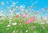 Fototapete - BLUMEN WIESE - (281i) Größe 366x254 cm 8-teilig - Landschaft Natur Wohnzimmer Kinderzimmer Küche- Motivtapete Postertapete Bildtapete Wall Mural