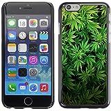 Graphic4You Marihuana Cannabis Hanf Blatt Raucher Design Harte Dünn Hülle Tasche Schale Schutzhülle für Apple iPhone 6 Plus / 6S Plus
