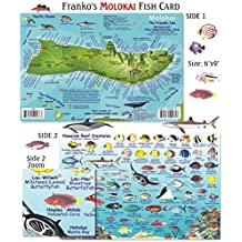 Franko Maps Molokai Reef Creatures Fish ID for Scuba Divers and Snorkelers