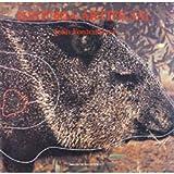 Historia artificial: El cor i les tenebres : Joan Fontcuberta : IVAM Centre Julio Gonzalez, 26 novembre 1992/24 de gener 1993