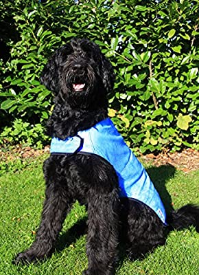 Prestige Cool Dog Cooling Dog Coat Blue