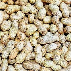 Croston Corn Mill 11.3kg (25lb) 'Wheatsheaf' Peanuts in Shell